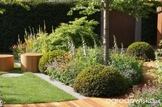 Ogród niby nowoczesny ale... - strona 1086 - Forum ogrodnicze - Ogrodowisko