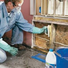 Almost every home gets mold. We'll show you how to identify mold and eliminate the small infestations, as well as the big ones that have gotten out of hand.