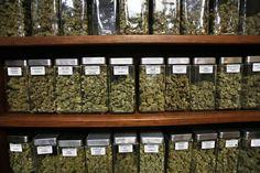 TSA's medical marijuana mix-up doesn't discourage this guy - Washington Post