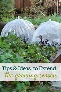 If you live in a climate that is marked by colder winters, extending the growing season by starting earlier or harvesting later can add months of additional enjoyment to your garden. There are many available...