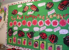 A super The Bad Tempered Ladybird classroom display photo contribution. Great ideas for your classroom!
