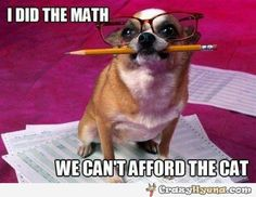 A+funny+picture+of+a+little+dog+wearyng+glasses+and+biting+a+pencil,+with+a+caption+telling+that+it+is+too+expensive+to+have+a+cat.