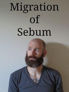 Migration of the Sebum - how to maintain the bald/beard combo    #beard #beardman