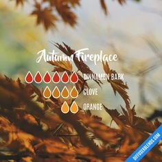 Autumn Fireplace - Essential Oil Diffuser Blend