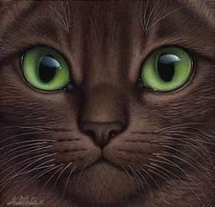 Brown Haired Green Eyed Cat by Braldt Bralds