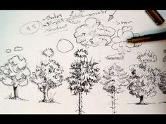 Pen & Ink Drawing Tutorials | How to draw trees - YouTube