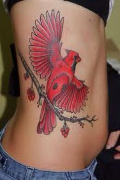 Red cardinal in memory of those I've lost