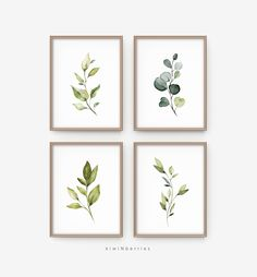 This Botanical print set Botanical illustration Farmhouse decor is just one of the custom, handmade pieces you'll find in our digital prints shops. Botanical Decor, Botanical Wall Art, Floral Wall Art, Framed Botanical Prints, Botanical Gallery Wall, Illustration Botanique, Botanical Illustration, Watercolor Illustration, Frames