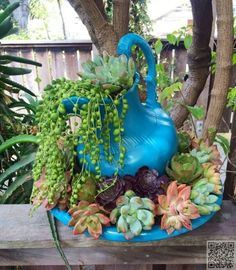 43 #Outstanding Succulent #Gardens You Can Create at Home ...