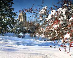 Brescia College London Ontario Canada. by KlickThis.com, via Flickr