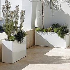 Quentin Rectangular Planter By Porta Forma - White, X - Frontgate Rectangular Planters, Tall Planters, Square Planters, White Planters, Modern Planters, Outdoor Planters, Outdoor Decor, Garden Urns, Garden Planters