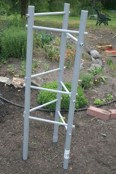 Home's Jewels: Tomato Cage Dilemma