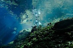 Tulum Underwater - Tulum - Omdömen om Tulum Underwater - TripAdvisor