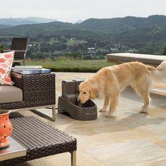 Cat Supplies Pet Supplies Generous Petsafe Pet Dog Cat Bowl Pond Aquarium Water Filter Filtration System 3-pack