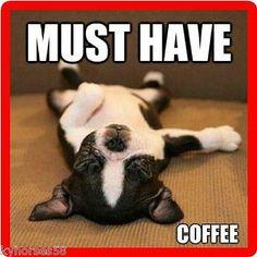 Funny Dog Humor Boston Terrier Coffee Refrigerator Magnet