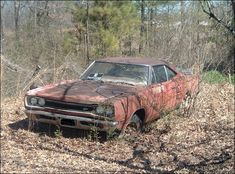 """from """"Rusty Muscle Cars"""" (now flabby muscle car)"""