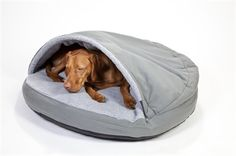 Cave Bed Grey Large 889mm