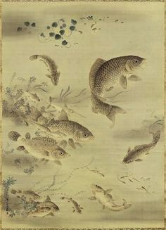 Fish and Duckweed  藻魚図  Japanese, Edo period, first half of the 19th century  Kano Isen'in Naganobu, Japanese, 1775–1828, Hanging scroll; ink and light color on silk, MFA