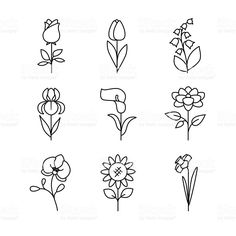 Illustration of Popular wedding flowers blossoming. Thin line art icons set. Modern black symbols isolated on white for infographics or web use. vector art, clipart and stock vectors. Doodle Drawings, Doodle Art, Mini Tattoos, Small Tattoos, Diy Wedding Flowers, Flower Doodles, Art Icon, Blossom Flower, Free Vector Art