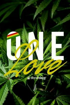 You know every weed lover has the same one love the love for some bud...