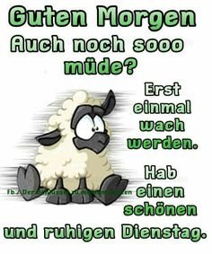 dienstag bilder lustig kostenlos dienstag bilder lustig kostenlos This image… – kids friendly meals Kid Friendly Dinner, Kid Friendly Meals, Tuesday Morning, Good Morning, Tuesday Humor, Free Episodes, Image Clipart, Summer Meal Planning, Senior Home Care