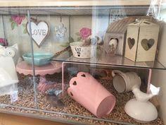 Hamster Tank, Hamster Diy Cage, Diy Hamster Toys, Gerbil Cages, Pet Mice, Pet Rats, Hedgehog Cage, Hamster Habitat, Mouse Cage