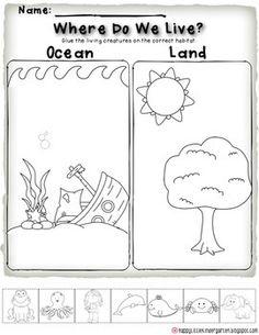 Ocean Theme Kindergarten