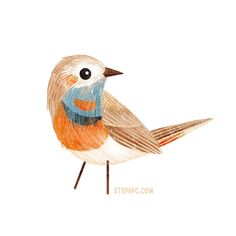 """Steph Fizer Coleman on Twitter: """"Tea time is also bird painting time around here. Like every day. Drink a cup of tea. Doodle up a sweet bird. My favorite kind of break! https://t.co/KaLHmvbADS"""""""