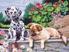 "dogs watching paint by number kit - 12"" x 16"""