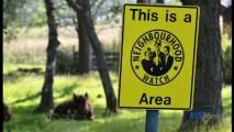 Neighbourhood watch meeting will give people the chance to ask questions about crime in their area. Austin Neighborhoods, Neighborhood Watch, Bespoke Design, Window Stickers, Media Center, Law Enforcement, Crime, Hold On, The Neighbourhood