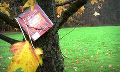 Intercambia libros con desconocidos a través de 'bookcrossing'