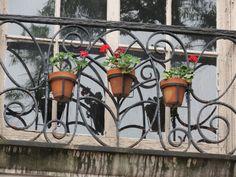 Ornamental Windows - photo by Carol Greene
