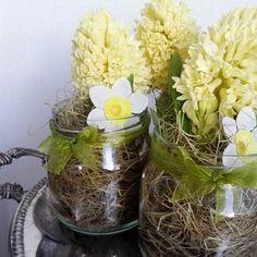 #keltainen #kevät #kukka #hyasintti #meriheinä #pääsiäinen #liisako #vanhat tavarat #sisustuspuoti