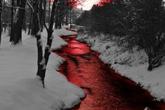 Uploaded by Find images and videos about red, snow and blood on We Heart It - the app to get lost in what you love. A Darker Shade Of Magic, Arte Obscura, Dark Shades, Red Aesthetic, Story Inspiration, Dark Art, Fantasy Art, Blood, Scenery