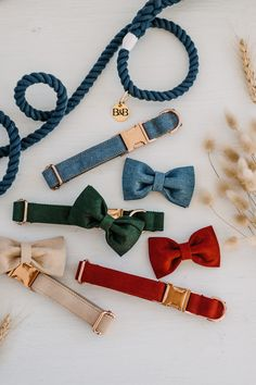 Bow Tie Dog Collars made from the strongest materials. Your choice of Rose Gold or Gold Hardware to suit your puppers personality! #dogsofaustralia #dogaccessories #bowtiedogcollar #dogsofpinterest #pinterestingdogs #dogs #dogsoftheworld #doggies