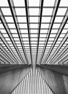 Swisscan (username) Lines Reflected Photography n/a Lines are being applied because the building is made of lines. I chose this photo because I love how the lines are all contrasted between gray, black, and white. The symmetry of the lines in the photo gives it an abstract look.