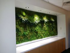 21+ Interesting Interior Moss Wall Design Ideas #PlantedDesign #MossWall #MossWalls #MossBoss #CustomDesign #MossBoss #SmallBusinessWeek #WomanOwnedBusiness #Gusto #PlantWall #PlantPowered #SustainableLiving #HousePlants #ReconnectWithNature #OfficePlants #GreenSpacesInUrbanPlaces #supportsmallbusinesses Ed Design, Wall Design, Design Ideas, Moss Wall Art, Stone Panels, Office Plants, Cafe Interior, Plant Wall, Cool House Designs