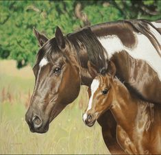 "Helen Bailey (TX) - ""Looking Out for Me"" - 23 x 24 inches colored pencil horse drawing"