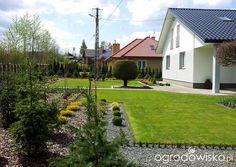 Moja codzienność - ogród Oli - strona 708 - Forum ogrodnicze - Ogrodowisko