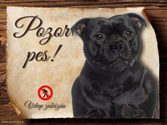 Cedulka Americký stafordšírský teriér - Pozor pes zákaz Pitbulls, Dogs, Animals, Animales, Pit Bulls, Animaux, Pitt Bulls, Doggies, Animal