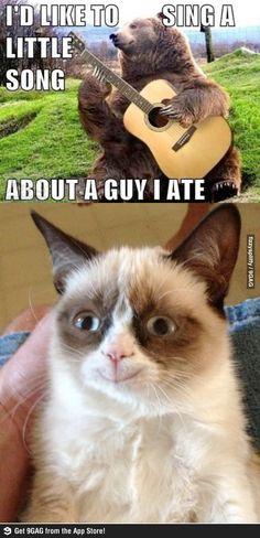 lol @ grumpy cat's face