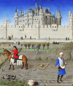 Early 15thC  Les Tres Riches Heures de Duc de Berry. Working farm horse - not exactly a shire or Clydesdale at this stage.