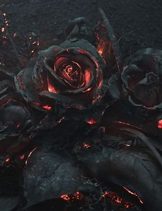 A rose that was caught in a forest fire-if Satan gave flowers. Imagen Natural, Gothic Art, Pics Art, Dark Art, Mother Nature, Fantasy Art, Fantasy Forest, Cool Art, Graffiti