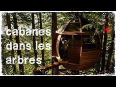 Cabane design dans les arbres en 34 inspirations