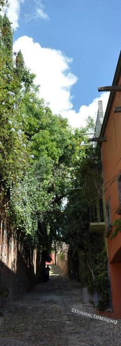 Streets of San Miguel de Allende #Mexico