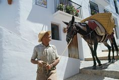 High-Res Stock Photography: Spain Malaga Andalusia Frigiliana Pueblos Blancos resident…