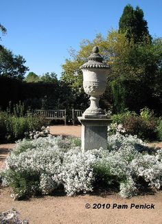 images of too many focal points in garden - Google Search