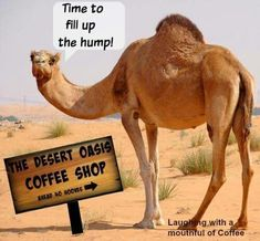 Time To Fill Up The Hump wednesday hump day humpday hump day camel wednesday quotes happy wednesday wednesday quote happy wednesday quotes Wednesday Coffee, Wednesday Hump Day, Happy Wednesday Quotes, Wednesday Humor, Happy Friday, Wednesday Greetings, Wonderful Wednesday, Coffee Is Life, I Love Coffee