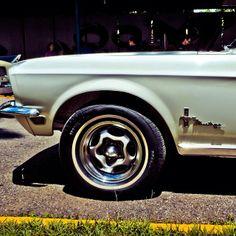 Mustang, en Los Dos Caminos