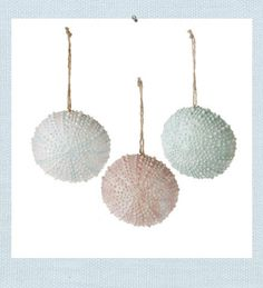 Create your own Seaside with our Sea Urchin Christmas ornaments. Textured lines of tiny bumps, just like a natural sea urchin are re-created. Coastal colors of blue, pink and aqua create a relaxing Christmas style. Glitter dusting adds a touch of sparkle. Beach Christmas, Coastal Christmas, Christmas Crafts For Kids, Christmas Trees, Christmas Decorations, Beach Ornaments, Holiday Ornaments, Rehearsal Dinner Centerpieces, Ocean Home Decor